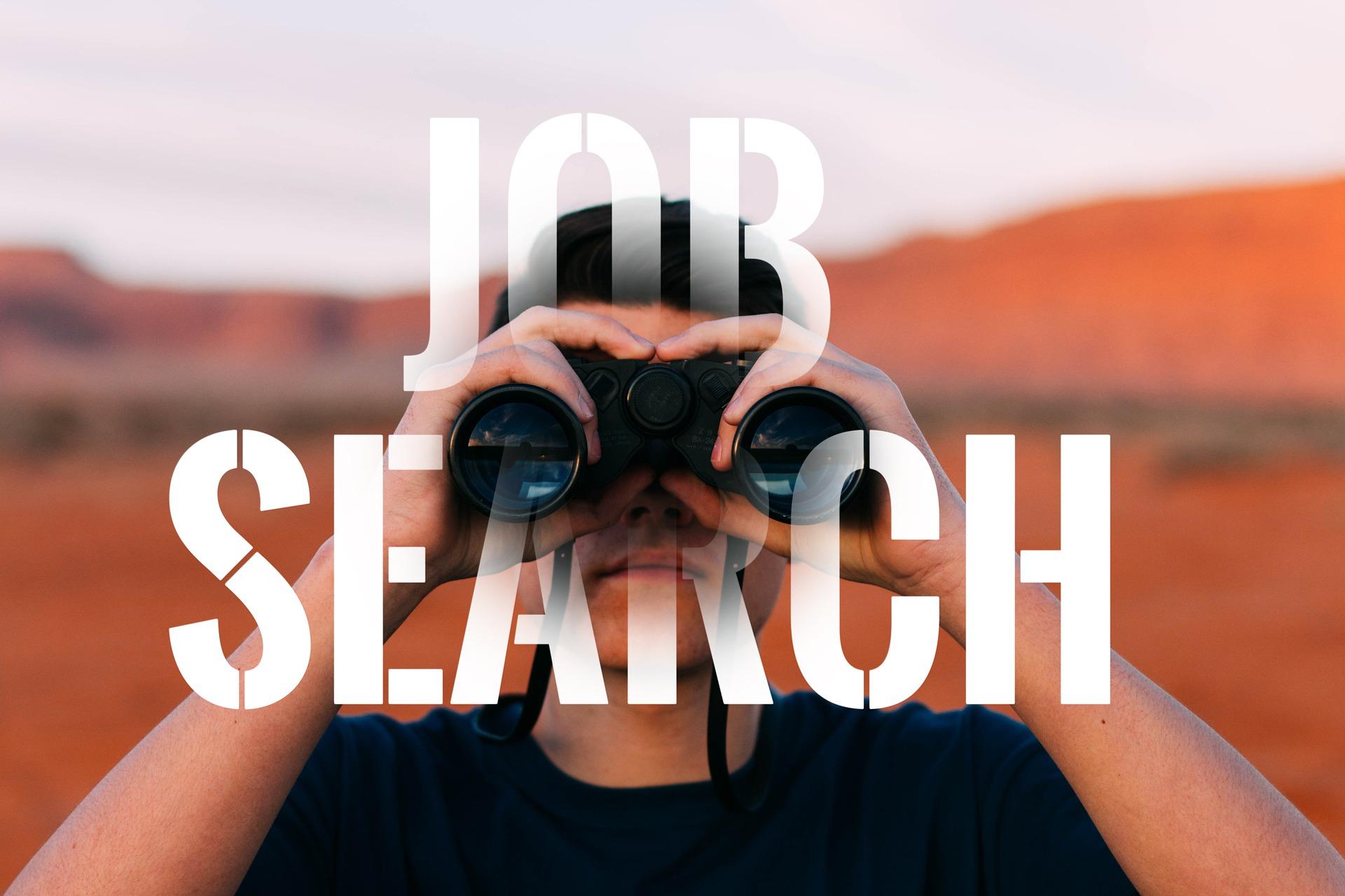 Techniques de recherche d'emploi et valorisation du profil